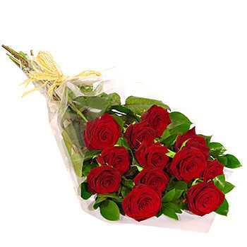 Dozen Red Roses Gift Wrap